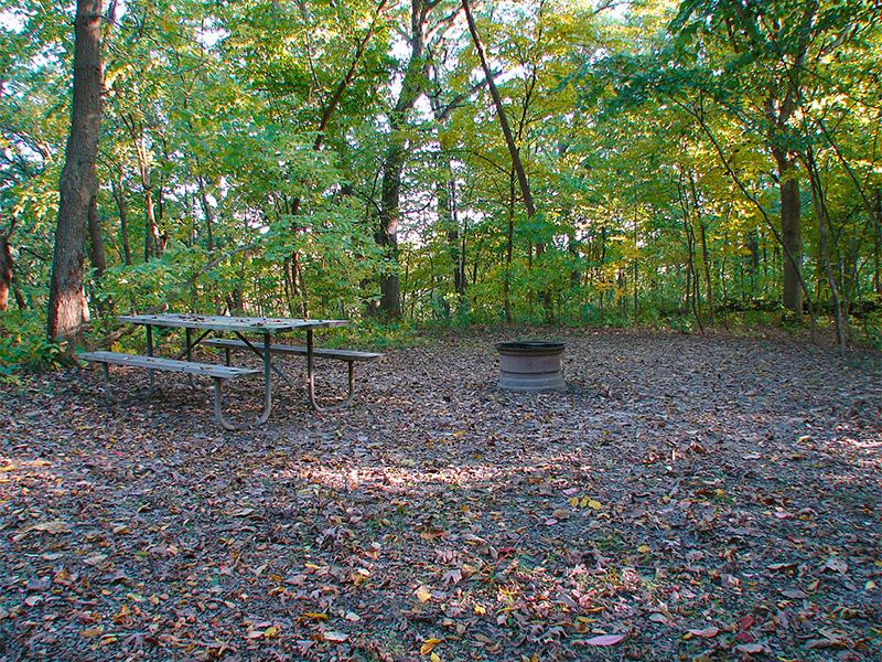Ashton Wildwood Campsite