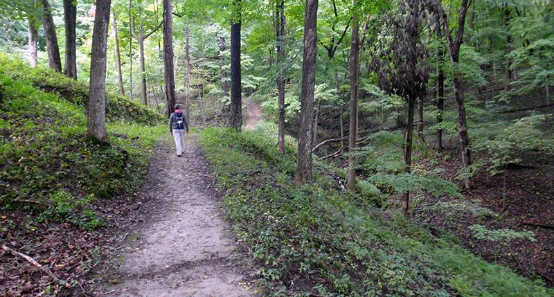 Backbone State Park - Trail