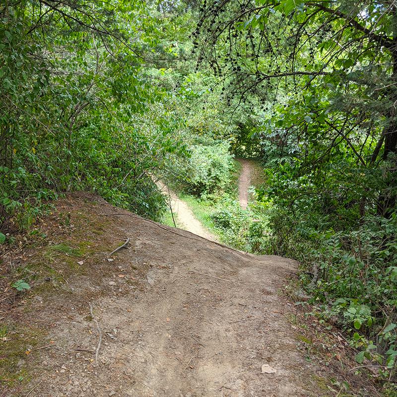 Coal Miner's Daughter Trail Rolldown