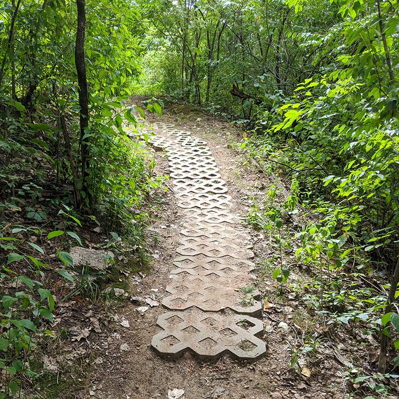 Corner Pocket Trail