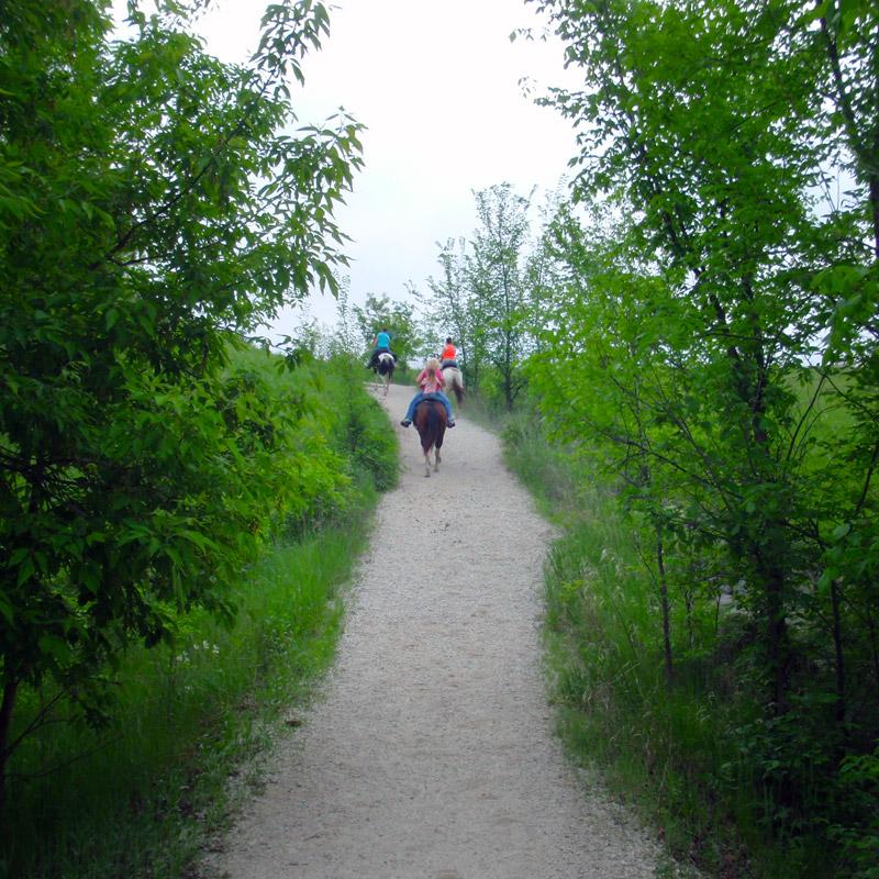 Lake Trail - Brushy Creek State Recreation Area