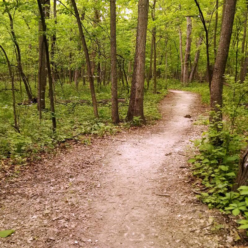 Preserve Trail - Brushy Creek State Recreation Area