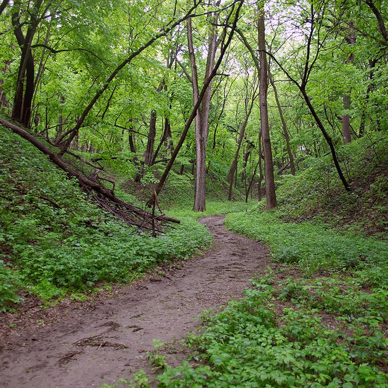 Mark's Glenn Trail Stone State Park